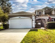 3218 River Branch Circle, Kissimmee image