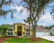 9907 Cypress Shadow Avenue, Tampa image