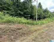 3524 County Road 22 Unit 1, Ashville image