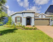 8004 Red Orchard Court, Tampa image