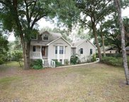11530 River Country Drive, Riverview image
