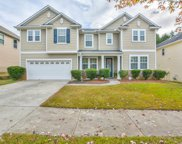 1168 Sparkling Cove Dr, Buford image