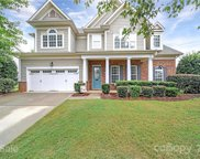 324 Miners Cove  Way, Fort Mill image