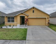 2711 Star Coral Lane, New Smyrna Beach image