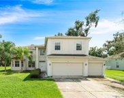 3123 Twisted Oak Loop, Kissimmee image