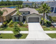 17908 Woodland View Drive, Lutz image