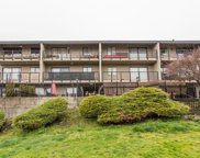 803 Queens Avenue Unit 303, New Westminster image