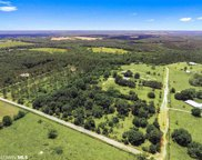 28855 Rose Run Rd, Robertsdale image