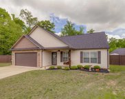 12 Rusty Court, Simpsonville image