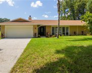 15324 Winding Creek Drive, Tampa image