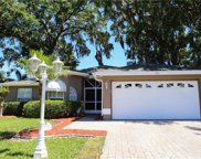 749 Sunflower Drive, Palm Harbor image