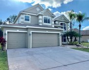 8273 Swann Hollow Drive, Tampa image