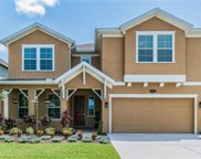 19307 Water Maple Drive, Tampa image