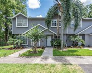 3404 Arbor Oaks Court, Tampa image