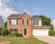 9724  Winged Trail Court, Charlotte image