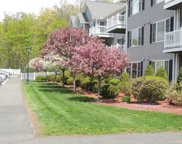 24 Greenleaves Drive Unit 440, Amherst image