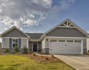 112 Fairmeadow Way, Greenville image