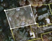 Saddleback Way, Sevierville image
