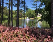 2218  Garden View Lane Unit #47, Weddington image