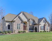 7344 Henson Forest Drive, Summerfield image