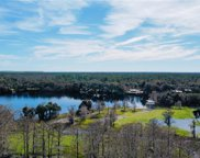 1207 Tall Pines Drive, Osteen image