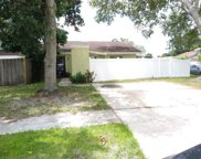 10312 Fernglen Place, Tampa image