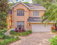 13116 Greengage Lane, Tampa image