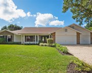 18233 Clear Lake Drive, Lutz image