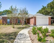 14631 Green Oaks Woods, San Antonio image