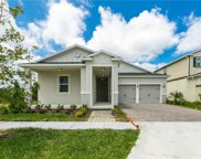 2951 Irish Peach Drive, Winter Garden image