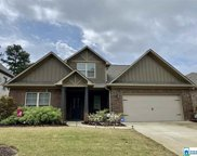 17 Waterford Pl, Trussville image