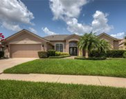 9094 Laurel Ridge Drive, Mount Dora image