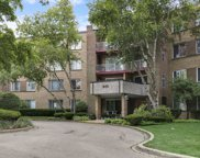 945 East Kenilworth Avenue Unit 226, Palatine image