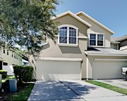 3703 AMERICAN HOLLY RD, Jacksonville image
