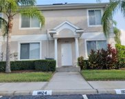 18124 Paradise Point Drive, Tampa image