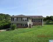 913 Country View Dr, Birmingham image