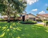 14702 Triple Eagle  Court, Fort Myers image