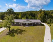 6743 Castle Heights Rd, Morris image