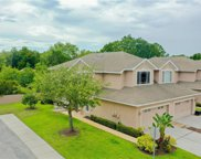 10302 Willow Leaf Trail, Tampa image