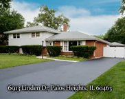 6913 West Linden Drive, Palos Heights image