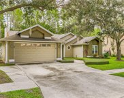 15109 Golden Eagle Way, Tampa image