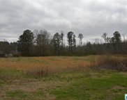 1405 Sanie Rd, Odenville image