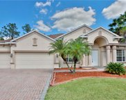 27539 Pine Point Drive, Wesley Chapel image