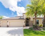 19346 Yellow Clover Drive, Tampa image