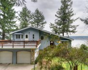 10125 Totem Wy, Anderson Island image