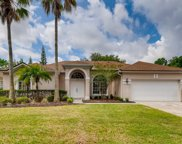 2224 Blackjack Oak Street, Ocoee image