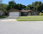 7807 Snapping Turtle Court, Hudson image