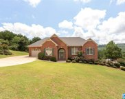 303 Valley View Ln, Oneonta image