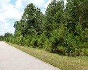 Lot 109 Riverbluff  Lane Unit #109, Lilesville image