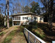 1512 Riley Road, Guntersville image